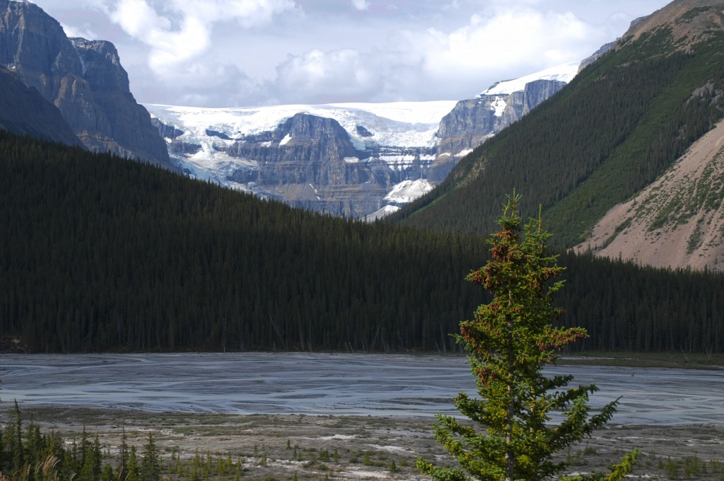 icefield - Copy